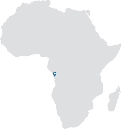 African continent gray silhouette